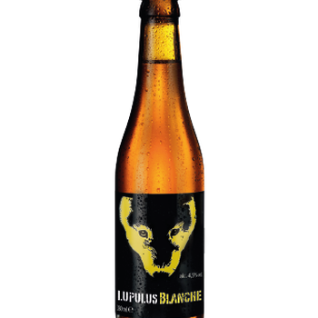 Lupulus blanche 33cl